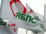 """""""Яблочники"""" отказались пойти за оппозицией в Марьино"""