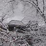 МЧС готовит Петербург к снежному шторму