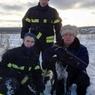 В новой Москве сотрудники МЧС  спасли собаку, провалившуюся в канализационный люк