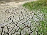 Эксперты: глобальное потепление нанесёт непоправимый ущерб экосистемам планеты