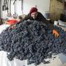 Виноградари потребовали извинений от журналиста, готового плевать на грузинское вино
