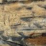 Археологи расшифровали загадочные надписи чероки
