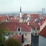 Власти Эстонии объявили в стране чрезвычайное положение