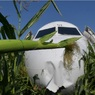 Пилотам, посадившим самолёт на кукурузное поле, присвоено звание Героев России