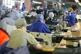 В легкой промышленности у трети работников зарплата не дотягивает и до 15 тысяч