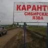 Суд огласил приговор жителю Татарстана за сибирскую язву