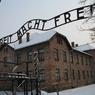 70-летие освобождения Освенцима отметят 300 узников концлагеря