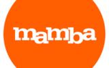 """Сервис знакомств """"Мамба"""" используется для повышения явки на выборах"""