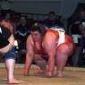 Глава ОКР Жуков впечатлился борьбой сумо в исполнении женщин