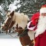 Ивановский Дед Мороз заморил лошадь громкой музыкой насмерть