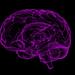 Американские ученые случайно нашли лекарство от болезни Альцгеймера