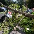 Небывалый ураган принес в Испанию дожди и снегопады и унес жизни 12 человек