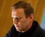 Немецкие врачи приступили к лечению Алексея Навального