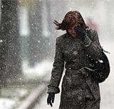 МЧС: На Москву надвигается штормовой ветер