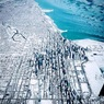 Аномальные морозы в США привели к гибели 8 человек
