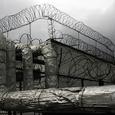 Два десятка россиянок осуждены пожизненно в Ираке за связи с террористами - СМИ