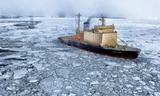 В ГД прокомментировали инициативу США отправить корабли в Арктику