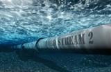 Немецкие экологи решили засудить «Северный поток-2»