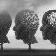 Нейробиологи узнали, как мозг защищает воспоминания