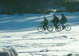 В России теплеет быстрее, чем во всем мире