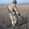 Украинские военные начали разминирование в районе Золотого