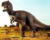 Ученые представили доказательства причин вымирания динозавров