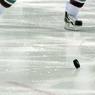 В Нью-Йорке полицейские и пожарные подрались на хоккейном матче