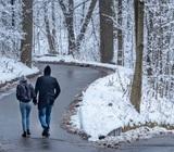 Глава Подмосковья допустил ослабление ограничений к Новому году, но обещать не стал
