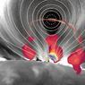 Ученые показали «главный двигатель», питающий солнечную вспышку