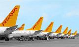 Турецкая авиакомпания Pegasus возобновила рейсы в Россию