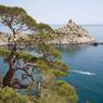 Продвигать крымский туризм станут всем миром