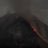 Что за гордый Буревестник смело реет над вулканом, молнии подобный? (ВИДЕО)