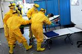 Все об Эболе: возможно ли заражение в России?