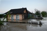 По возвращении жители Алтая заявили об огромном ущербе от паводка