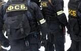 Жительницу Севастополя заподозрили в работе на украинские спецслужбы