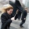 МЧС предупреждает москвичей о сильном ветре