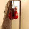 """Мейвезер: После ухода из бокса займусь поисками """"нового Флойда Мейвезера"""""""