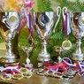 У известной спортсменки по гребле украли все ее трофеи