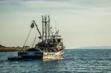 В Японии задержан россиянин - капитан рыболовного судна