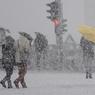 Державу унесло ураганом в Омске (ФОТО, ВИДЕО)