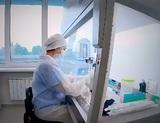 В Совбезе предложили готовиться к пандемиям искусственных вирусов