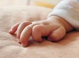 СК объявил в международный розыск фигуранта дела о суррогатном материнстве