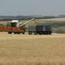 На Кубани собрали рекордный урожай