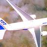 Один из пассажиров «Боинга» был найден с кислородной маской