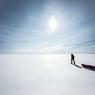 Кто живет в глубинных водах Антарктиды? (ФОТО)