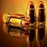 Депутаты-единороссы подготовили законопроект об усилении контроля над оборотом оружия