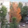 В Москву сквозь зиму прокралась осень