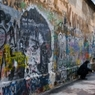 Вандалы отомстили поклонникам Цоя, написав о его смерти на арбатской стене