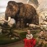 Вслед за Дедом Морозом рискуют остаться бомжами  мишки Владимирского музея природы