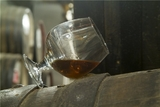 Ученые нашли причину развития алкогольной зависимости